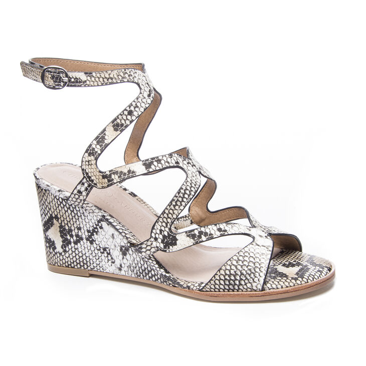 Chinese Laundry Radical Wedges in Natural Multi